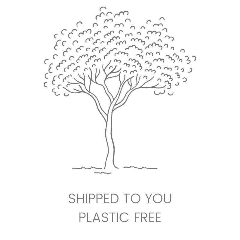 plastic-free packaged